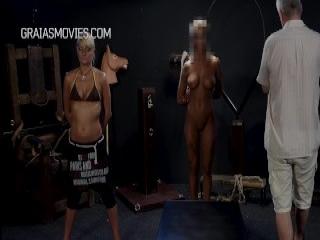 Webcam Store 7